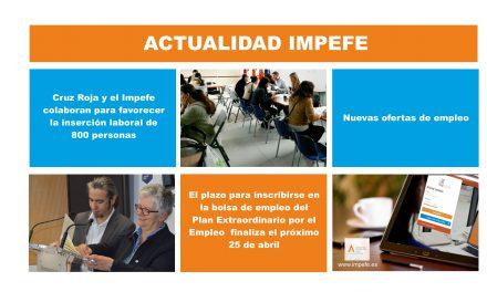Actualidad IMPEFE: Cruz Roja y el Impefe colaboran para favorecer la inserción laboral de 800 personas, en marcha el Plan de Empleo 2018 y nuevas ofertas de empleo