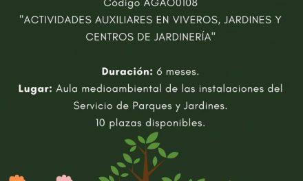 PUBLICADAS LOS LISTADOS DEFINITIVAS DEL TALLER CIUDAD REAL VERDE